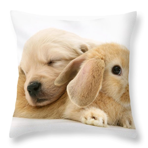 Rabbit And Puppy Throw Pillow by Jane Burton