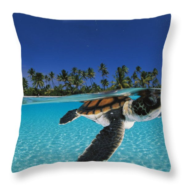 A Baby Green Sea Turtle Swimming Throw Pillow by David Doubilet