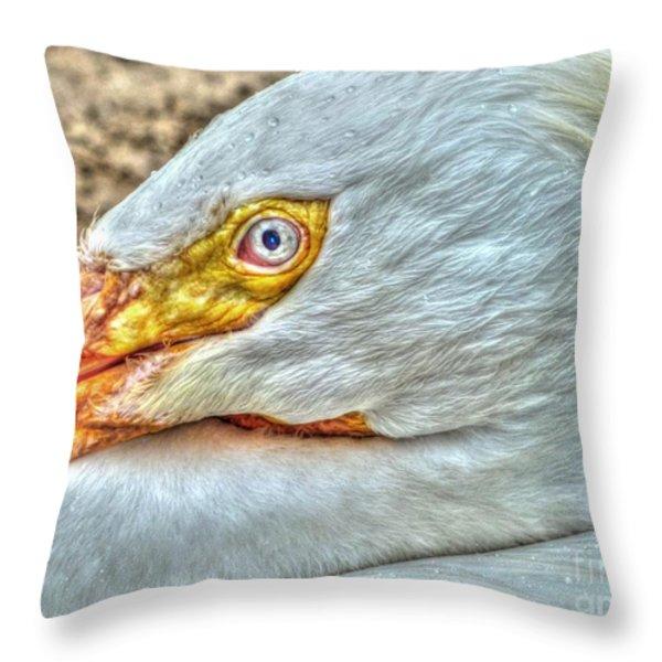 A Bird's Eye View Throw Pillow by Michael Garyet