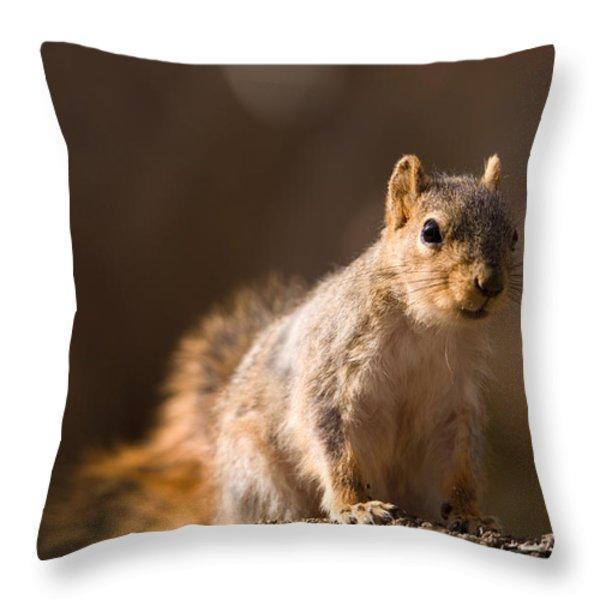 A Close-up Of A Fox Squirrel Sciurus Throw Pillow by Joel Sartore