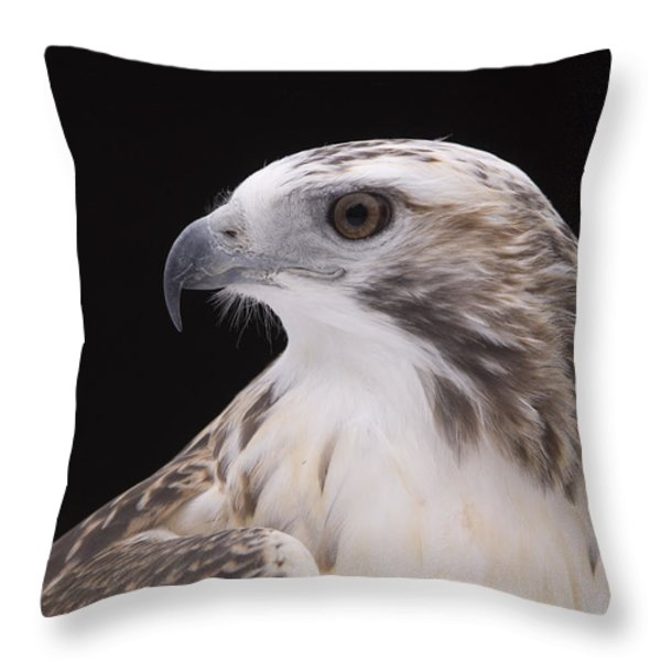 A Close-up Of A Kriders Red-tailed Throw Pillow by Joel Sartore
