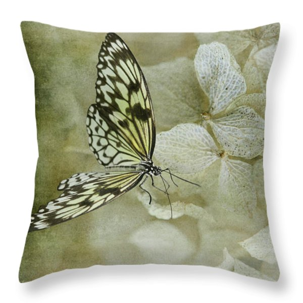 A Lighter Touch Throw Pillow by Lois Bryan