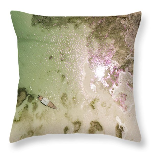 A Motor Boat Anchored In The Shallow Throw Pillow by Michael Fay
