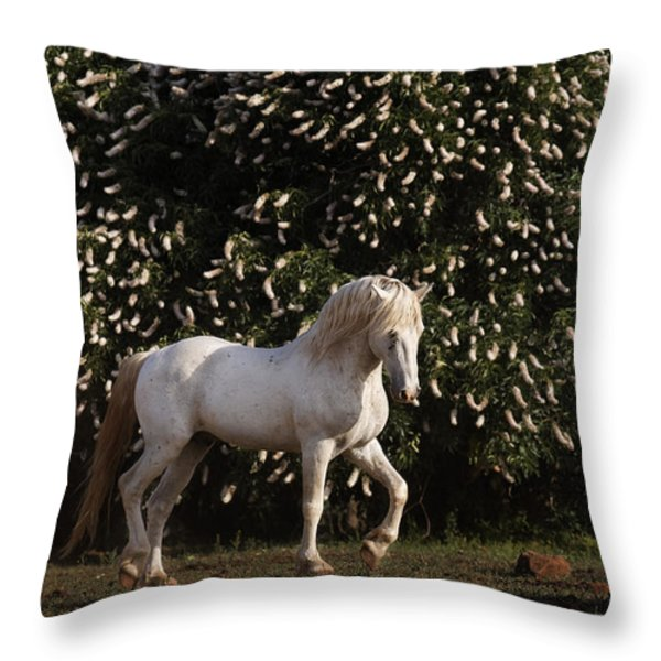 A Mustang Stallion In The Wild Horse Throw Pillow by Melissa Farlow