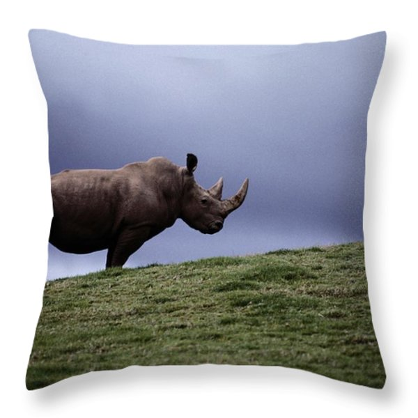 A Northern White Rhinoceros At The San Throw Pillow by Michael Nichols
