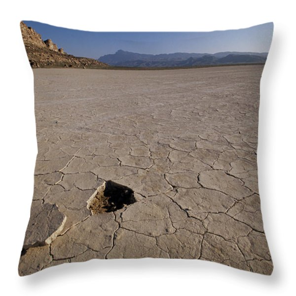 A Parched Lake Bed Below Notch Peak Throw Pillow by Bill Hatcher