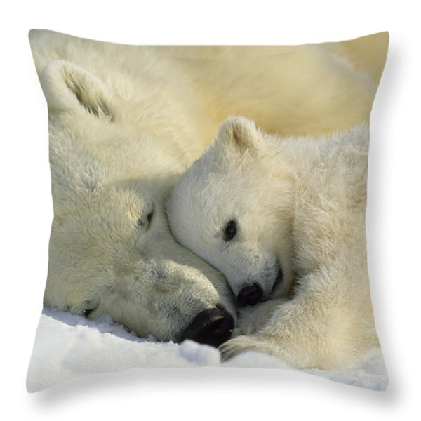 A Polar Bear And Her Cub Napping Throw Pillow by Norbert Rosing