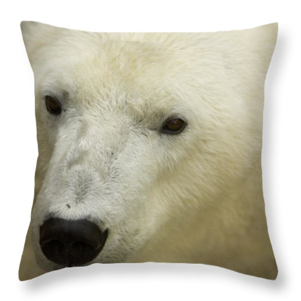 A Polar Bear At The Henry Doorly Zoo Throw Pillow by Joel Sartore