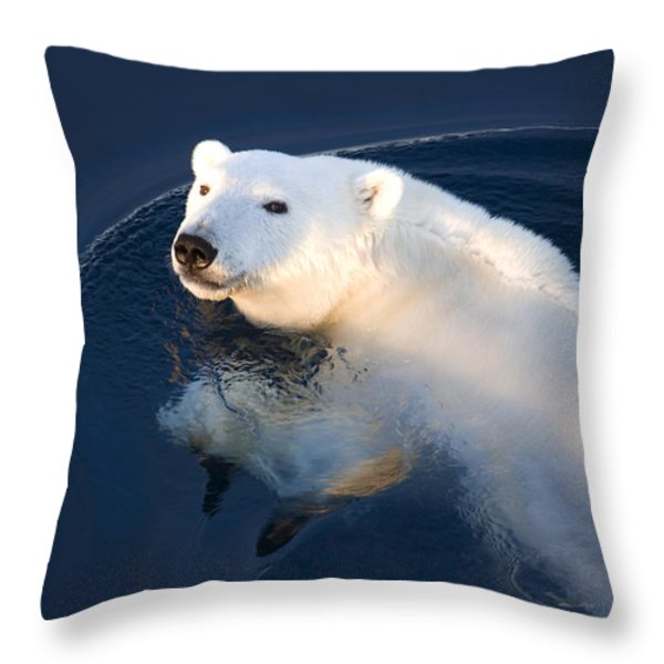 A Polar Bear Glance Throw Pillow by Ira Meyer