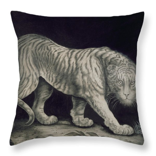 A Prowling Tiger Throw Pillow by Elizabeth Pringle