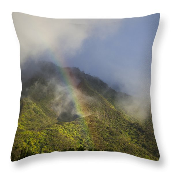 A Rainbow Shines Over The Rugged Throw Pillow by Taylor S. Kennedy