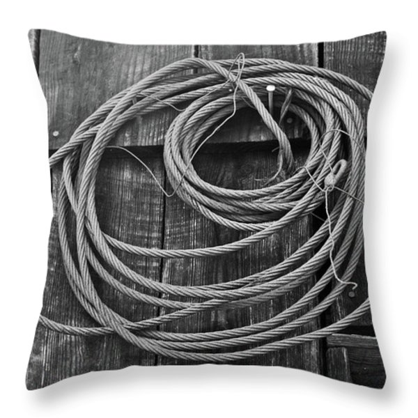A Study of Wire in Gray Throw Pillow by Douglas Barnett