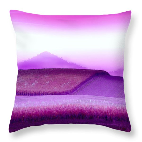 A Sweet Harvest Throw Pillow by Holly Kempe