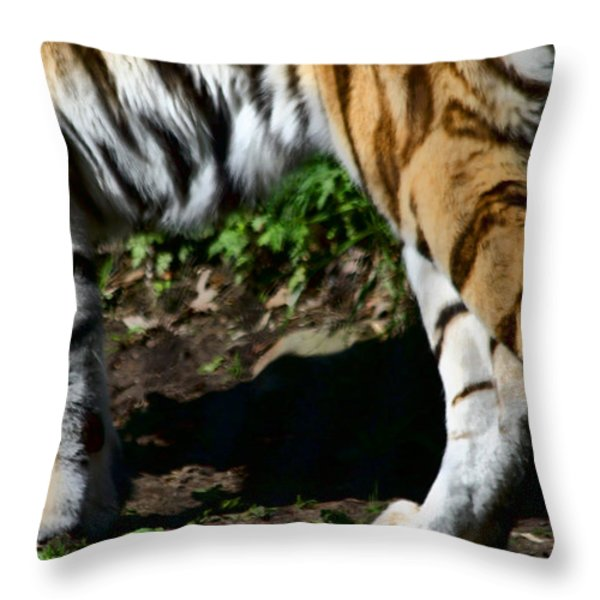 A Tigers Stride Throw Pillow by Karol Livote