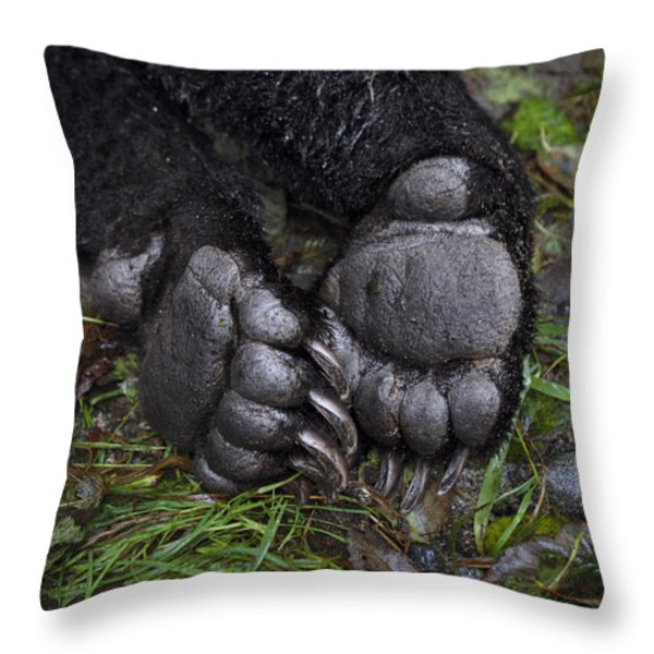 A Tranquilized Brown Bear Throw Pillow by Melissa Farlow
