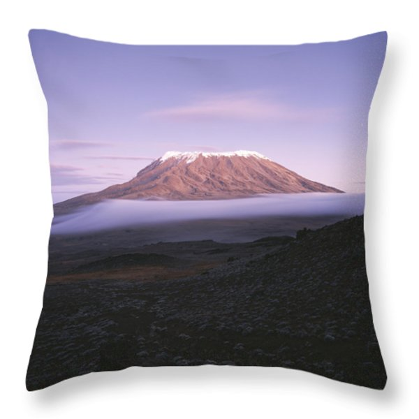 A View Of Snow-capped Mount Kilimanjaro Throw Pillow by David Pluth