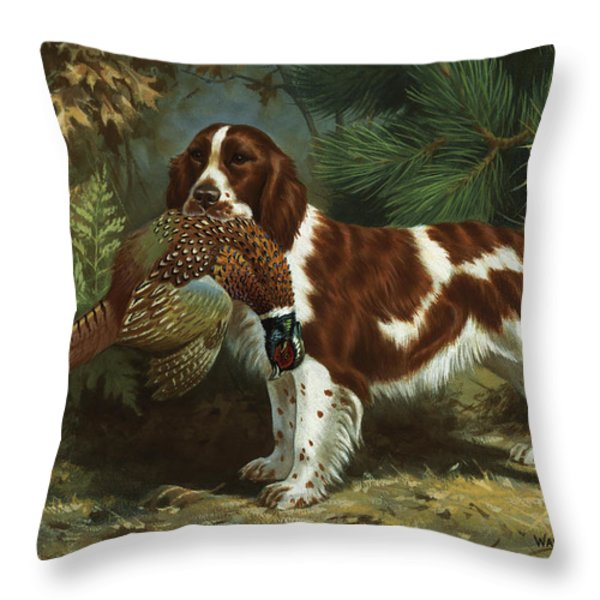 A Welsh Springer Spaniel Holds A Dead Throw Pillow by Walter A. Weber