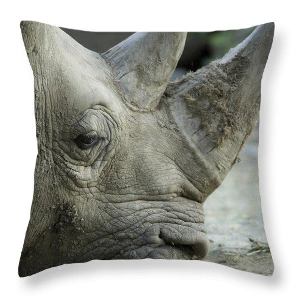 A White Rhino Sniffs The Muddy Ground Throw Pillow by Joel Sartore