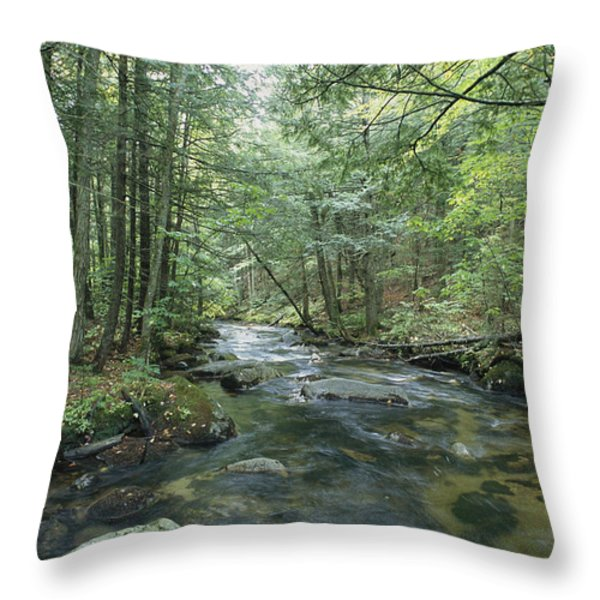 A Woodland View With A Rushing Brook Throw Pillow by Heather Perry