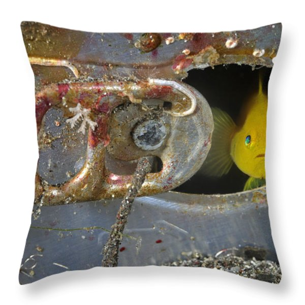 A Yellow Goby Peers Through The Window Throw Pillow by Brian J. Skerry