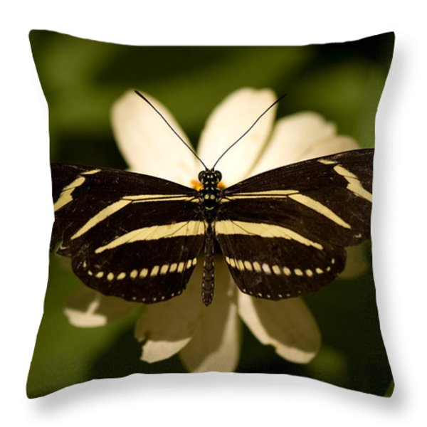 A Zebra-winged Butterfly At The Lincoln Throw Pillow by Joel Sartore