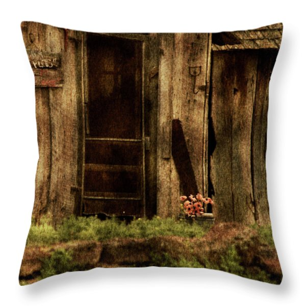 Abandoned Throw Pillow by Bonnie Bruno