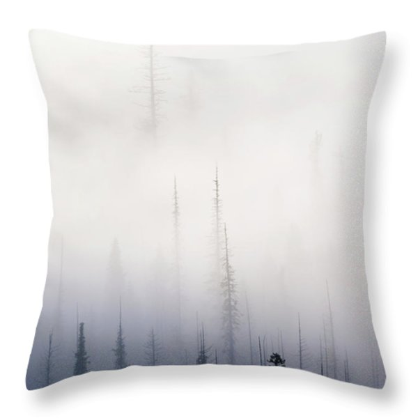 Above them All Throw Pillow by Mike  Dawson