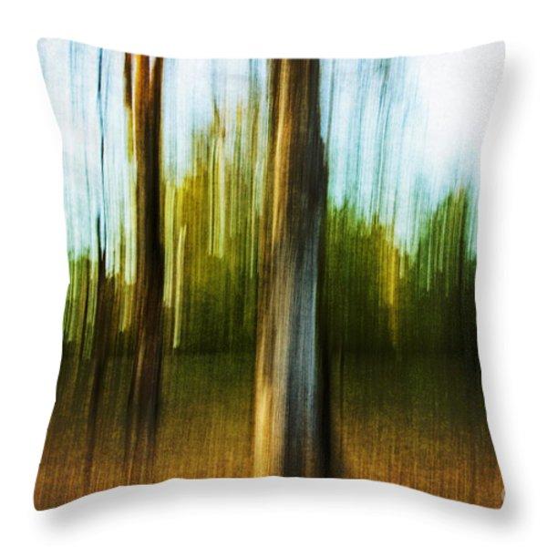 Abstract 1 Throw Pillow by Scott Pellegrin