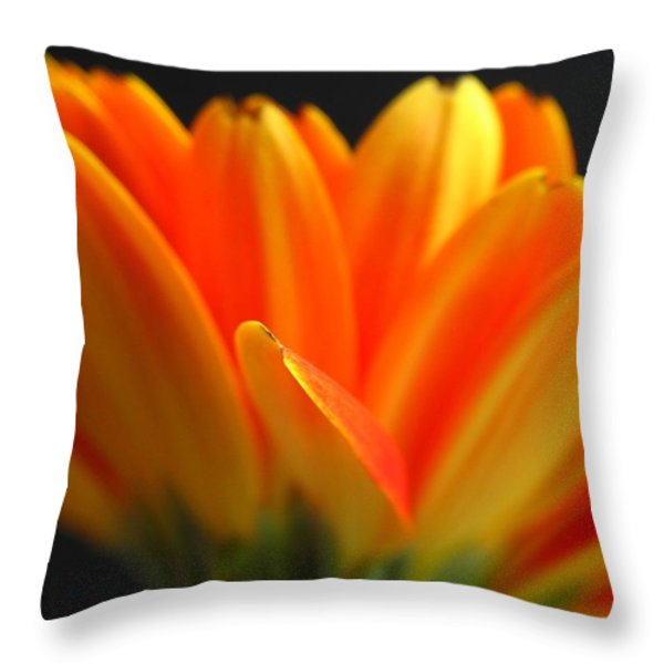 Abstract Gerbera Petals Throw Pillow by Juergen Roth