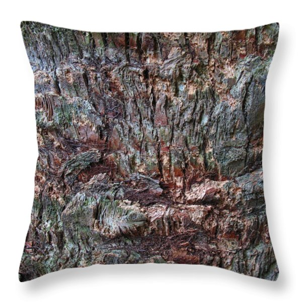 Abstract Tree Bark Throw Pillow by Juergen Roth
