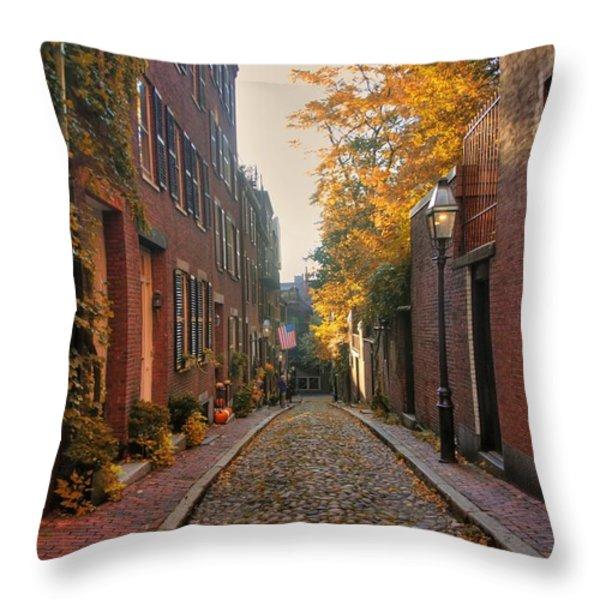 Acorn St. 3 Throw Pillow by Joann Vitali