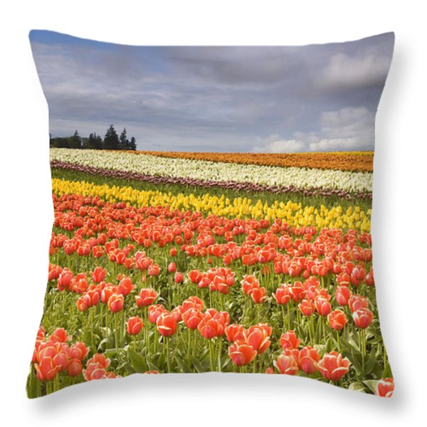 Across colorful fields Throw Pillow by Mike  Dawson