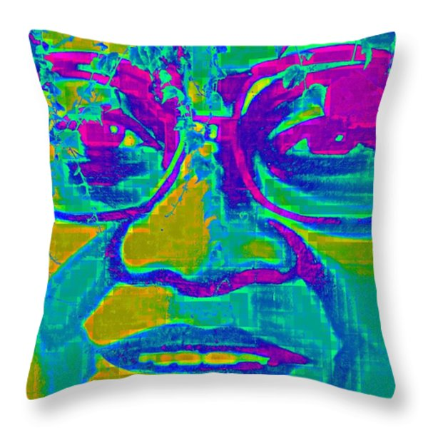 Activist Throw Pillow by Randall Weidner