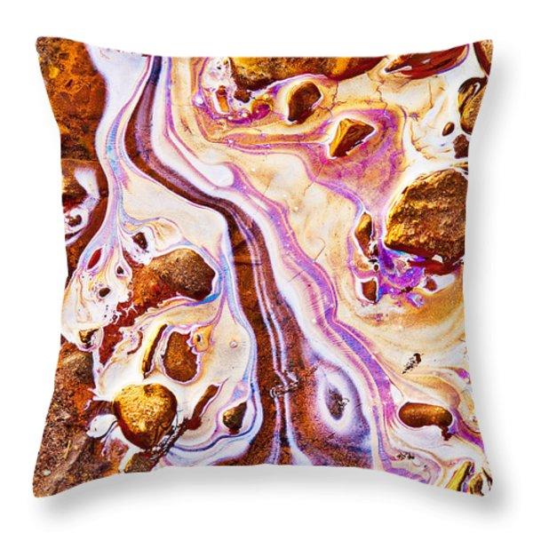 Adam Throw Pillow by Linda McRae