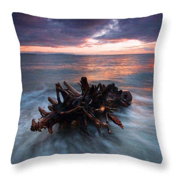 Adrift Throw Pillow by Mike  Dawson