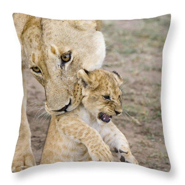African Lion Mother Picking Up Cub Throw Pillow by Suzi Eszterhas