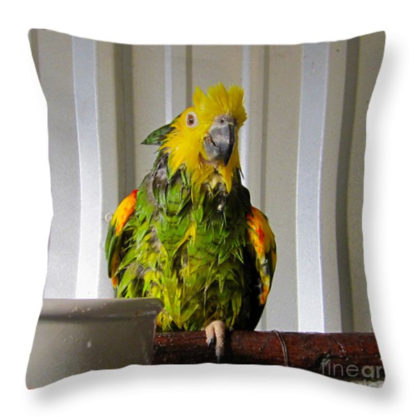 After The Bath Throw Pillow by Victoria Harrington