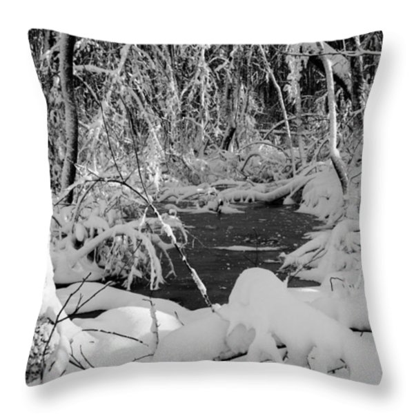 After The Storm Throw Pillow by Andrew Pacheco