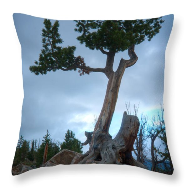 Against the Odds Throw Pillow by Idaho Scenic Images Linda Lantzy