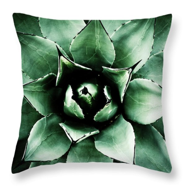 Throw Pillow featuring the photograph Agave Parryi by Frank Tschakert