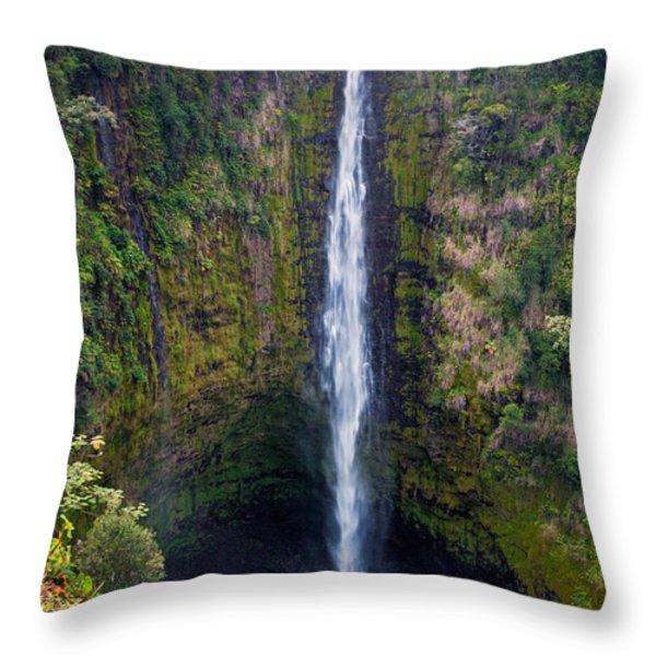 Akaka Falls - The Big Island Hawaii Throw Pillow by Brian Harig