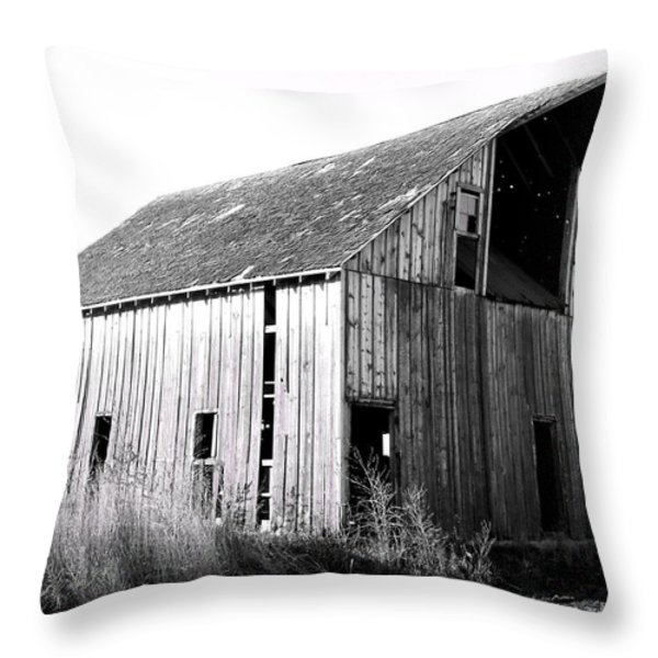 Albert City Barn 3 Throw Pillow by Julie Hamilton