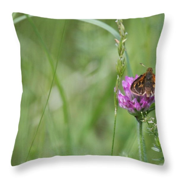 All By Myself Throw Pillow by Karol Livote