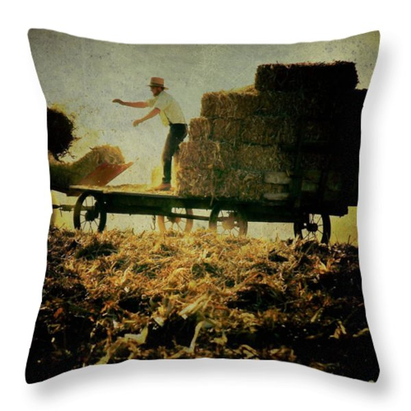 All In A Day's Work Throw Pillow by Trish Tritz