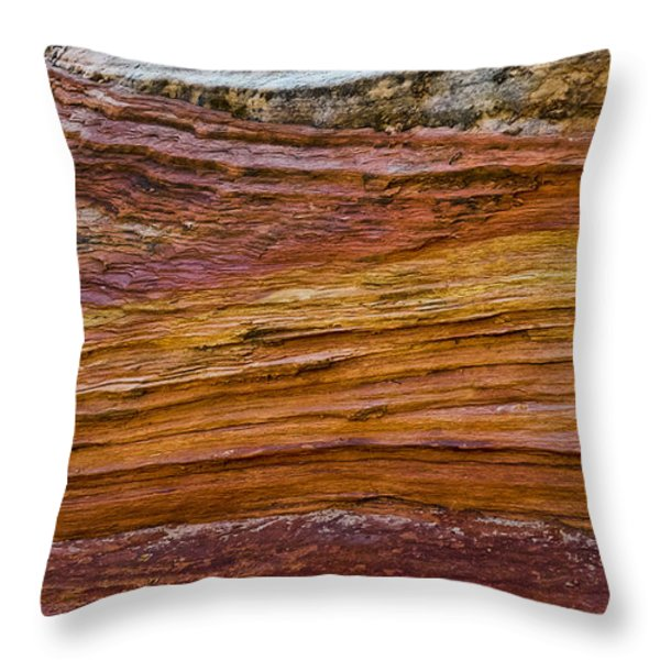 Allegro Throw Pillow by Skip Hunt
