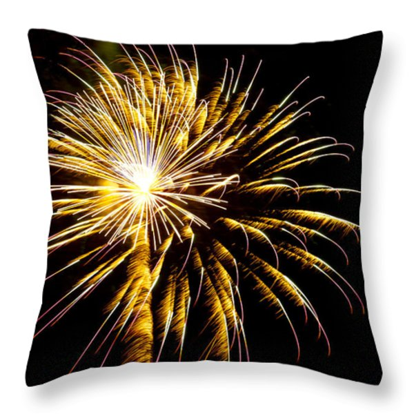 Almost a Tree Throw Pillow by Phill  Doherty