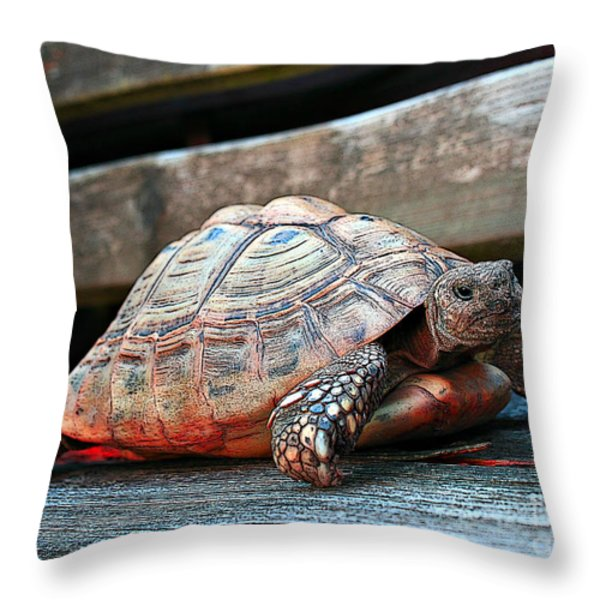 Always At Home Throw Pillow by Jutta Maria Pusl