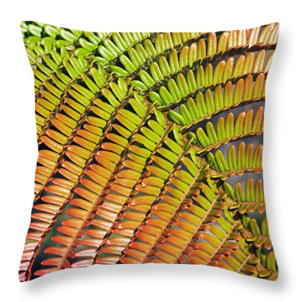 Amaumau Fern Frond Throw Pillow by Greg Vaughn - Printscapes