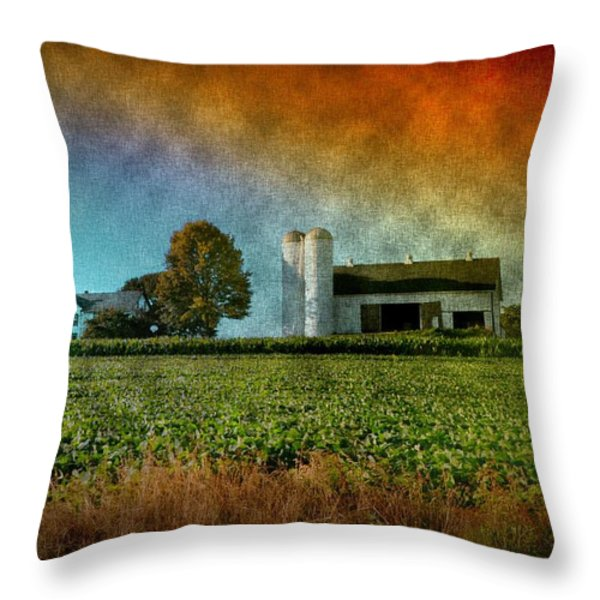 Amish Country Farm Throw Pillow by Bill Cannon