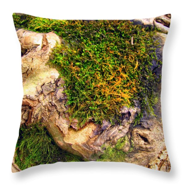 Among The Tree Roots Throw Pillow by Todd A Blanchard